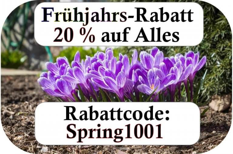 Frühjahrs-Rabatt